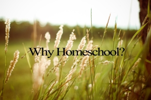 why homeschool